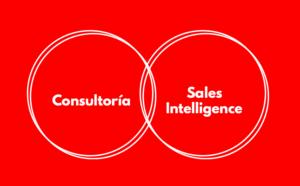 consultoria_sales